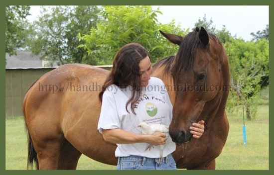 Naturally Right Horse Feed 50 Pounds FREE SHIPPING!!