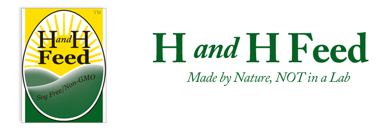 H and H Feed - Soy Free/Corn Free/Non GMO Feed